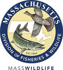 MA Division of Fisheries & Wildlife